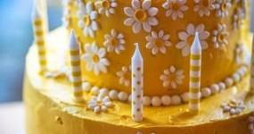 Wuollet Bakery Bunny Cake
